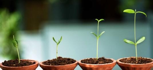 Kỹ năng và tố chất nào bạn cần để khởi nghiệp thành công?
